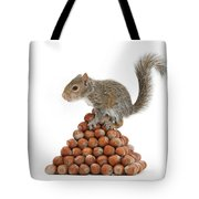 Squirrel And Nut Pyramid Tote Bag by Mark Taylor