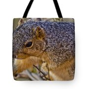 Squirrel Having A Heart Attack Tote Bag