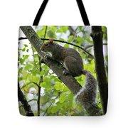 Squirrel I Tote Bag