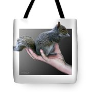 Squirrel In Hand Tote Bag