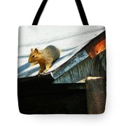 Squirrel On A Hot Tin Roof Tote Bag