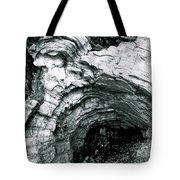 Squirrelly Look Nook Tote Bag