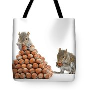 Squirrels And Nut Pyramid Tote Bag