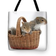 Squirrels In A Basket Tote Bag by Mark Taylor