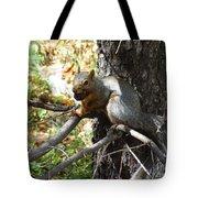 Squirrling Away Tote Bag