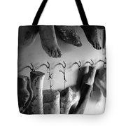 St Roch 1 Tote Bag