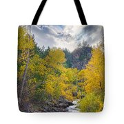 St Vrain Canyon Autumn Colorado View Tote Bag