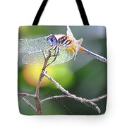 Stained Glass Inspiration Feminine Tote Bag
