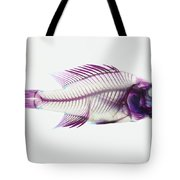 Stained Rockbass Fish Tote Bag