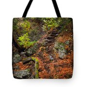 Stairway To The Sky Tote Bag