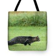 Stalking Tote Bag