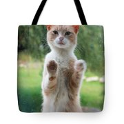 Standing Cat Tote Bag
