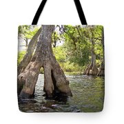 Standing Firm Tote Bag