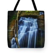 Standing In Motion Tote Bag