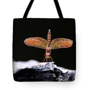 Standing In The Mornig Light Tote Bag