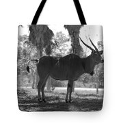 Standing Tall In Black And White Tote Bag
