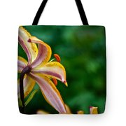 Star Lily Tote Bag
