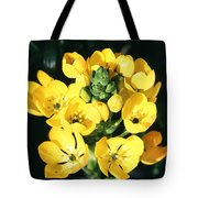Star Of Bethlehem Tote Bag by Science Source