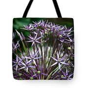 Star Of Persia Tote Bag