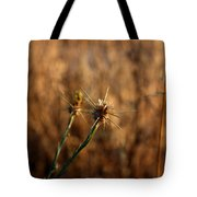 Star Thistle Tote Bag
