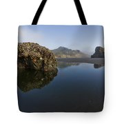 Starfish Beach Tote Bag by Debra and Dave Vanderlaan