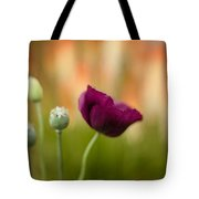 Stark Poppies Tote Bag