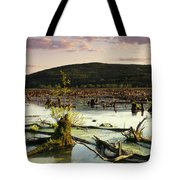 Stater Pond At Sunset Tote Bag