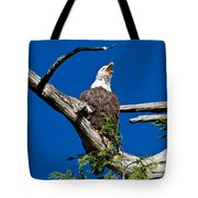 Squawking Alaskan Eagle Tote Bag