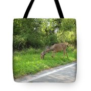 Stay Off The Road Bambi Tote Bag