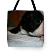 Stealing Hearts Tote Bag