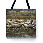 Stellers Sea Lion Eumetopias Jubatus Tote Bag