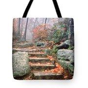 Steps Cloudland Canyon Tote Bag