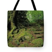 Steps In The Wild Garden, Galnleam Tote Bag
