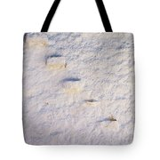 Steps Of The Wall Tote Bag