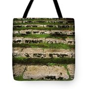 Steps On The Central Walk, Lismore Tote Bag