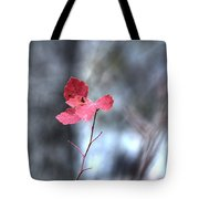 Still Amid Transition Tote Bag