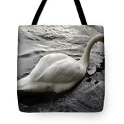Still Waters Run Deep Tote Bag