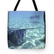 Sting Ray World Near The Nw Coast Tote Bag