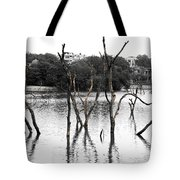 Stomps Of Trees In A Lake Tote Bag