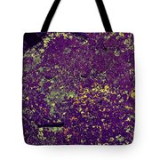 Stone Face At Hossa With Stone Age Paintings Tote Bag