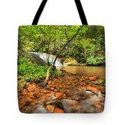Stone Mountain Lower Falls Tote Bag