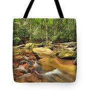 Stone Mountain Stream Tote Bag
