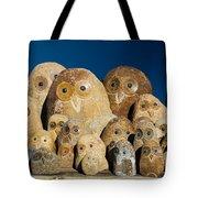 Stone Owls Tote Bag