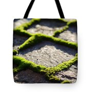 Stone Road With Green Moss Tote Bag