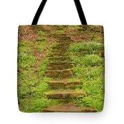 Stone Step Trail 1 Tote Bag