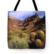 Stonecreek Canyon In The Grand Canyon Tote Bag