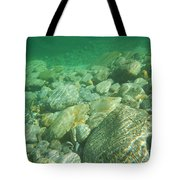 Stones Under The Water Tote Bag