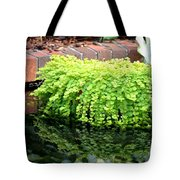 Stoneside Reflections Tote Bag