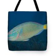 Stoplight Parrotfish On Caribbean Reef Tote Bag