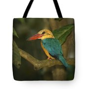 Stork-billed Kingfisher Perched Tote Bag
